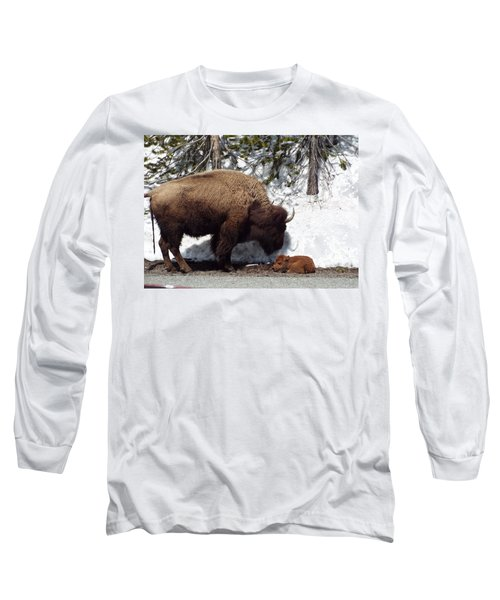 Bison Calf After Birth Long Sleeve T-Shirt