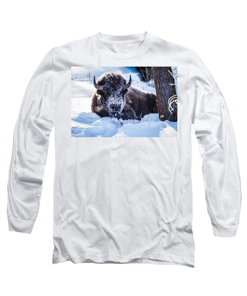 Long Sleeve T-Shirt featuring the photograph Bison At Frozen Dawn by Yeates Photography