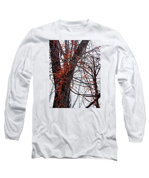 Bittersweet Long Sleeve T-Shirt