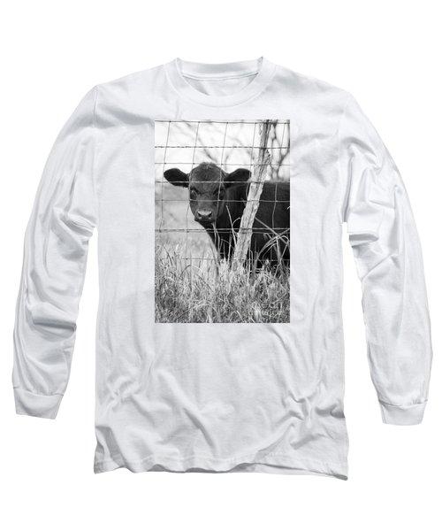 Black Angus Calf Long Sleeve T-Shirt