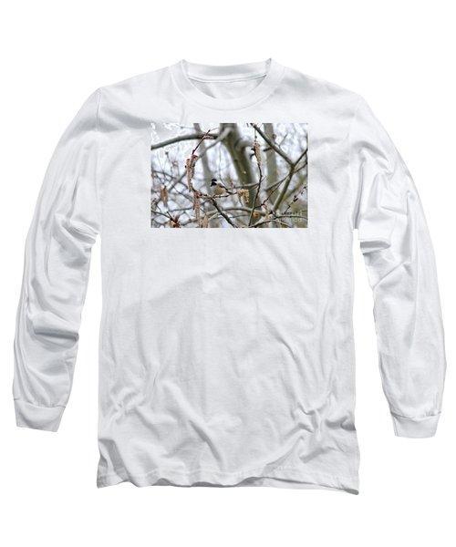 Black-capped Chickadee 20120321_39b Long Sleeve T-Shirt