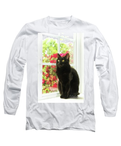 Black Cat In White Frames Long Sleeve T-Shirt