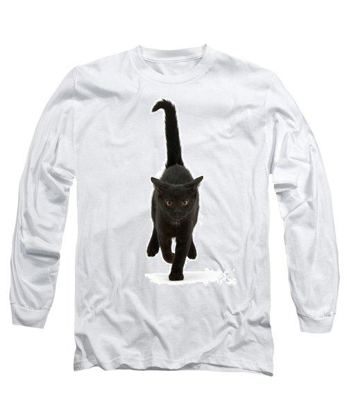 Black Cat On The Run Long Sleeve T-Shirt