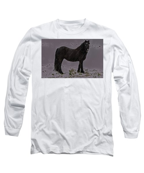 Black Horse In The Snow Long Sleeve T-Shirt