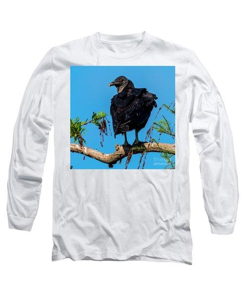 Black Vulture Long Sleeve T-Shirt
