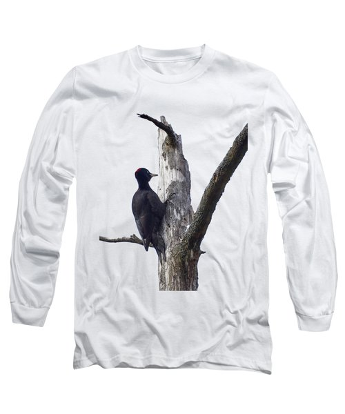 Black Woodpecker Transparent Long Sleeve T-Shirt