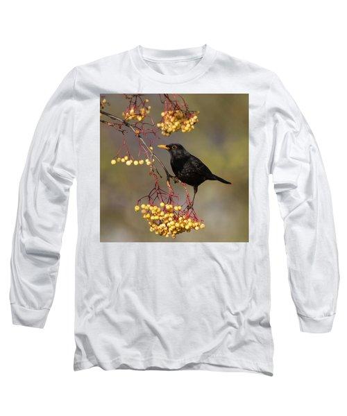 Blackbird Yellow Berries Long Sleeve T-Shirt