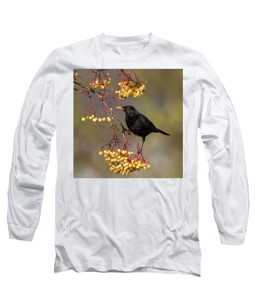 Blackbird Yellow Berries Long Sleeve T-Shirt