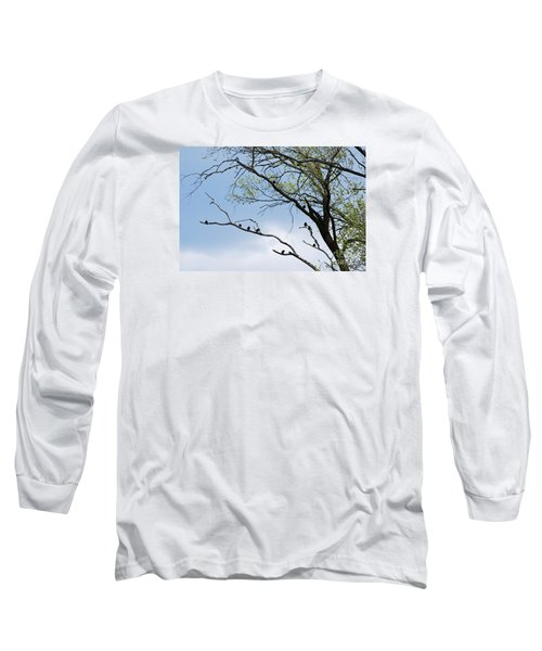 Long Sleeve T-Shirt featuring the photograph Blackbirds 20120409_221a by Tina Hopkins