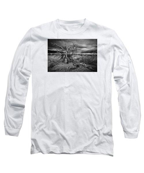 Bleached Bones Long Sleeve T-Shirt