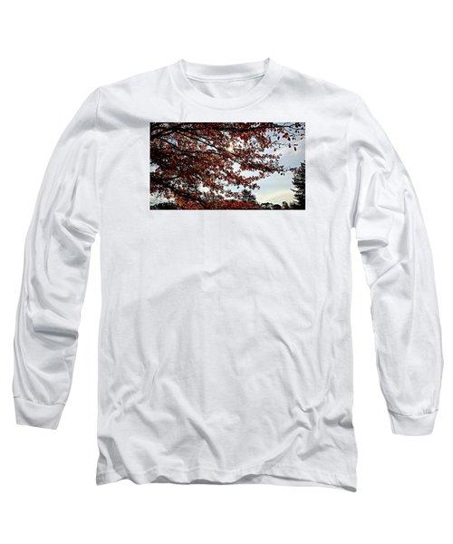 Blister  Long Sleeve T-Shirt by Jana E Provenzano
