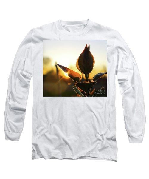 Blooming Lilac At Sunset Long Sleeve T-Shirt