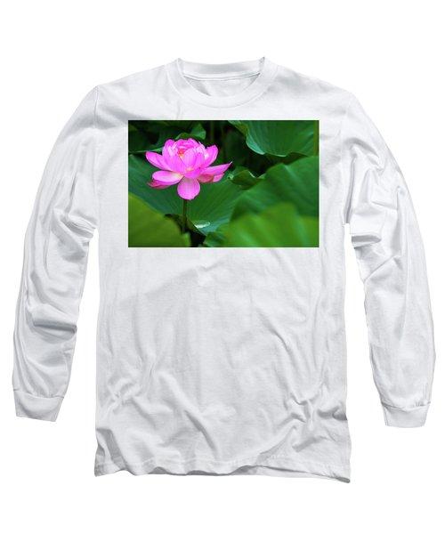 Blooming Pink Lotus Lily Long Sleeve T-Shirt