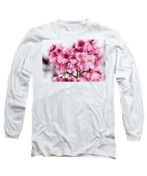 Blossoms 3 Long Sleeve T-Shirt