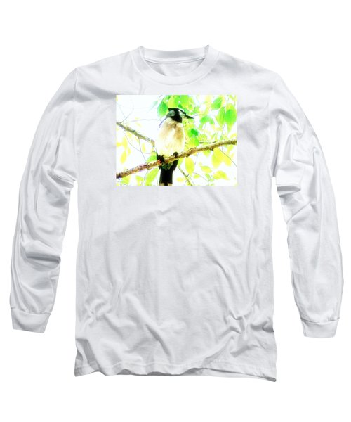 Blue Jay IIi Long Sleeve T-Shirt by Clarice  Lakota