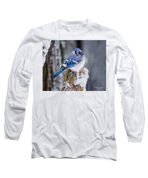 Blue Jay On Snowy Post Long Sleeve T-Shirt