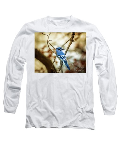 Blue Jay Long Sleeve T-Shirt by Robert Frederick