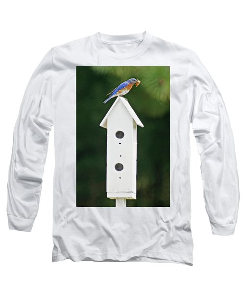 Bluebird Dad Long Sleeve T-Shirt by Judy Johnson