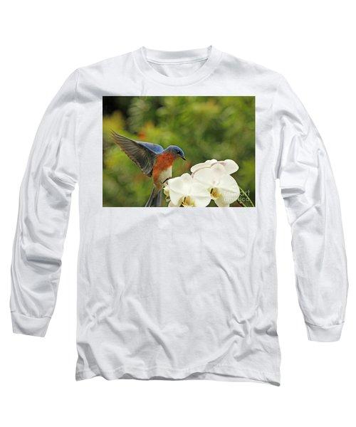 Bluebird Landing On Orchid Long Sleeve T-Shirt by Luana K Perez