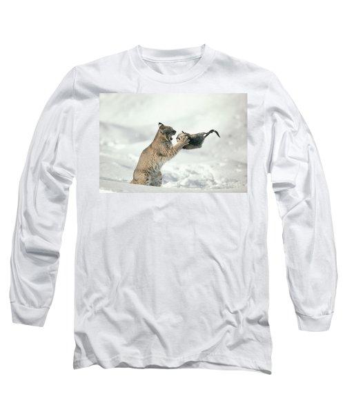 Bobcat Lynx Rufus Capturing Muskrat Long Sleeve T-Shirt