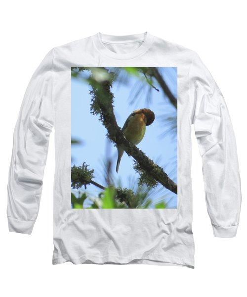 Bird Of Pray - Images From The Garden Long Sleeve T-Shirt by Brooks Garten Hauschild
