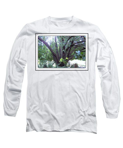 Bradford Long Sleeve T-Shirt