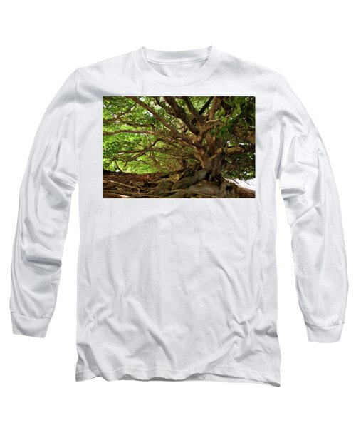 Branches And Roots Long Sleeve T-Shirt