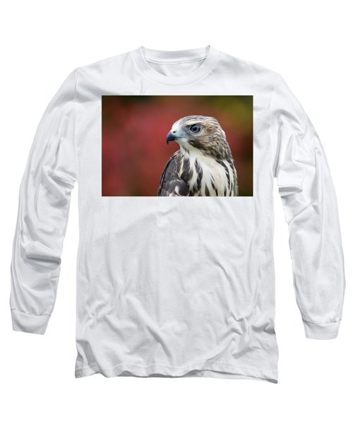 Broad Wing Hawk Long Sleeve T-Shirt