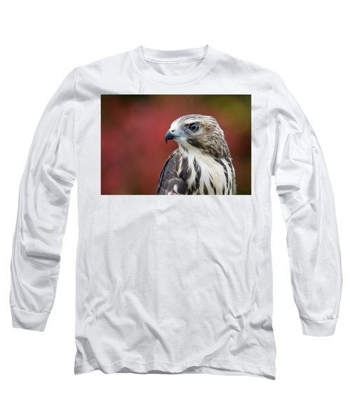 Broad Wing Hawk Long Sleeve T-Shirt