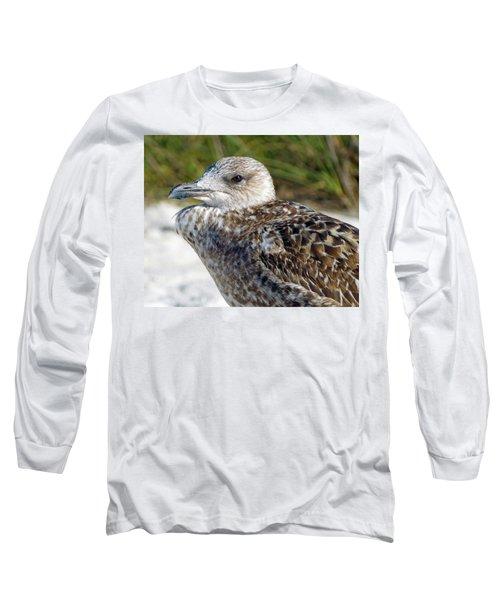 Brown Gull At Wiggins Pass Long Sleeve T-Shirt