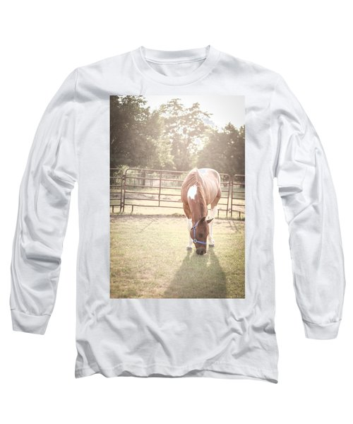 Brown Horse In A Pasture Long Sleeve T-Shirt