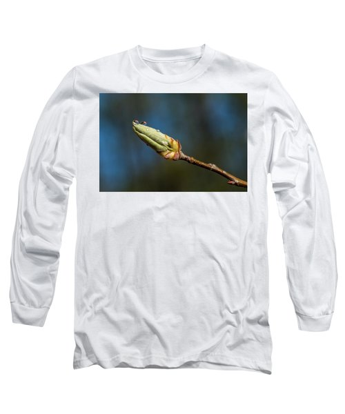 Long Sleeve T-Shirt featuring the photograph Buds With Water Drops by Paul Freidlund