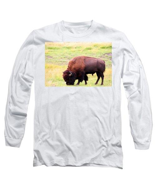 Buffalo Roaming Long Sleeve T-Shirt