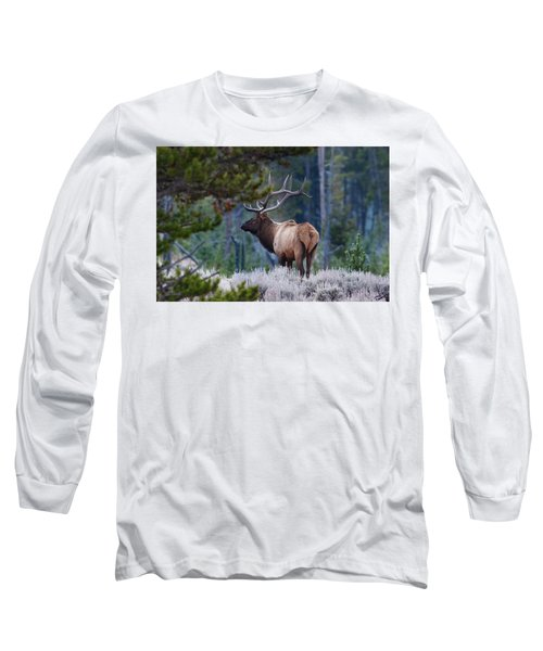 Bull Elk In Forest Long Sleeve T-Shirt