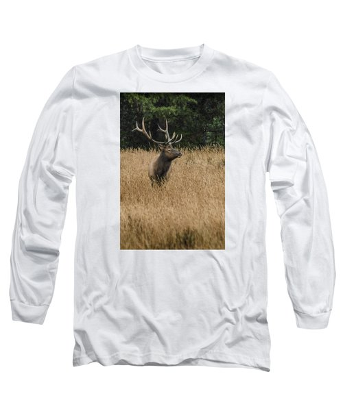 Bull Elk In Yellowstone Long Sleeve T-Shirt