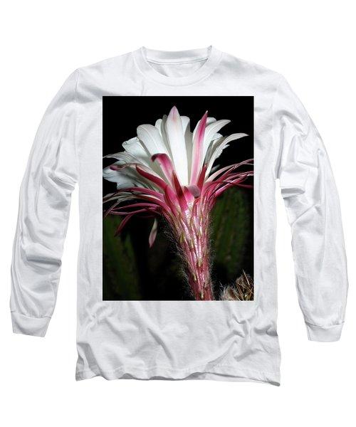 Bursting Forth Long Sleeve T-Shirt