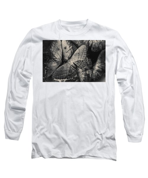 Butterfly #2056 Long Sleeve T-Shirt
