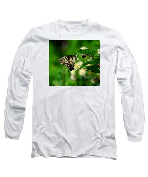 Butterfly And The Bee Sharing Long Sleeve T-Shirt by Kathy Eickenberg