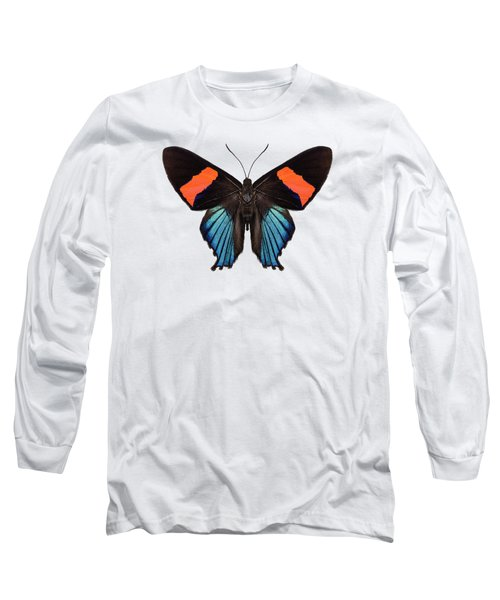 Butterfly Species Butterfly Species Ancyluris Miranda In High Definition Extreme Focus Isolated On W Long Sleeve T-Shirt