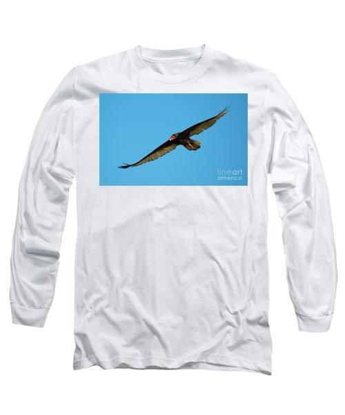 Buzzard Circling Long Sleeve T-Shirt by Mike Dawson