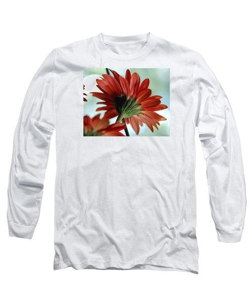 Cabrera Daisy Long Sleeve T-Shirt by John Schneider