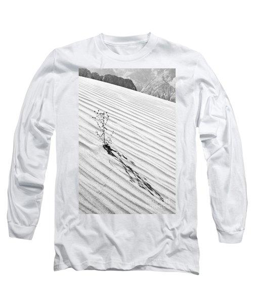 Cactus In Desert Long Sleeve T-Shirt