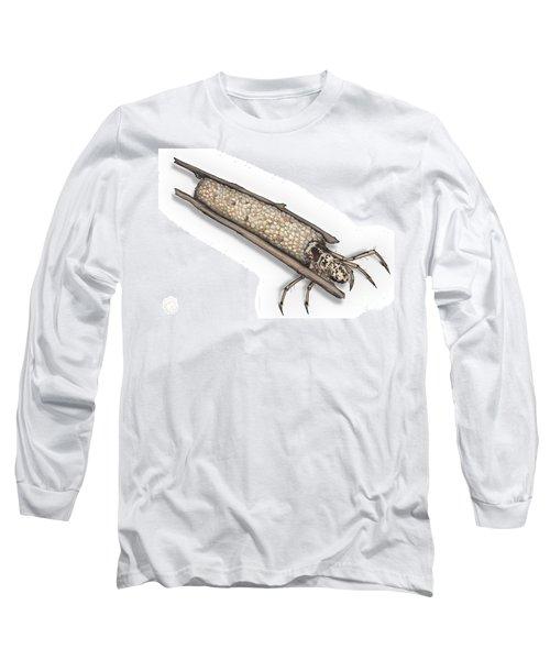 Caddisfly Limnephilidae Anabolia Nervosea Larva Nymph -  Long Sleeve T-Shirt