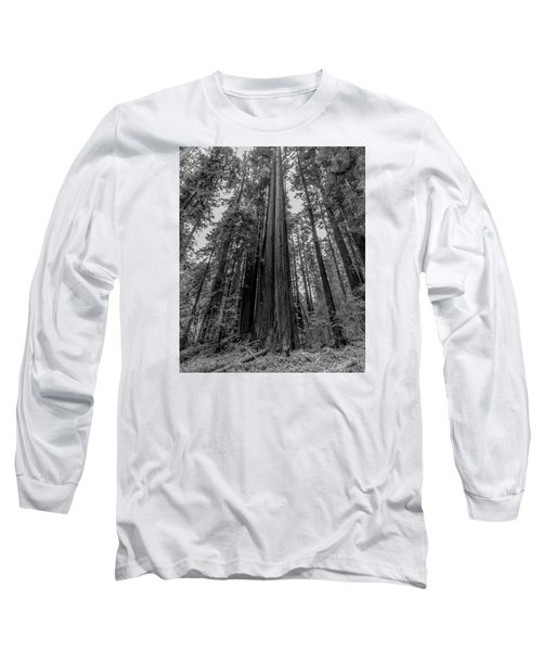 California Forest Long Sleeve T-Shirt