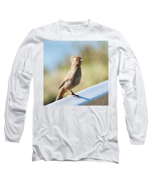 California Towhee ? Long Sleeve T-Shirt by Daniel Hebard