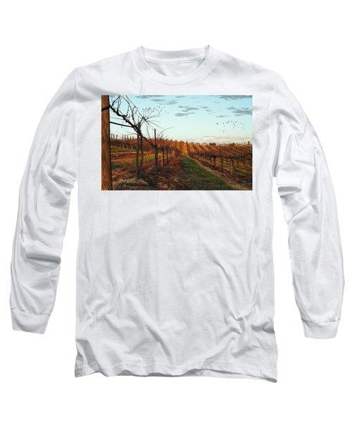 California Vineyard In Winter Long Sleeve T-Shirt