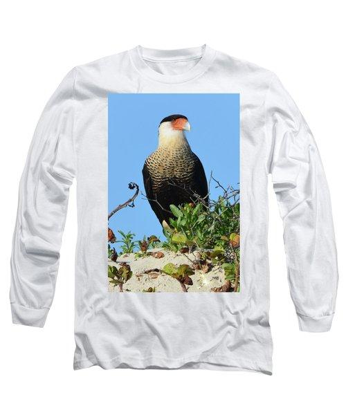 Long Sleeve T-Shirt featuring the photograph Caracara Portrait by Debra Martz