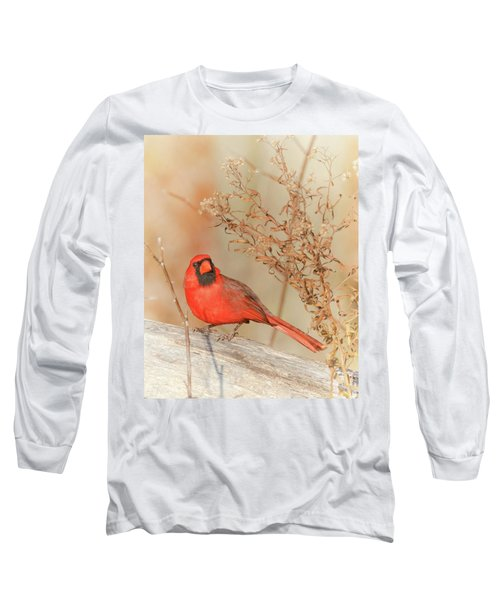 Cardinal In Fall  Long Sleeve T-Shirt