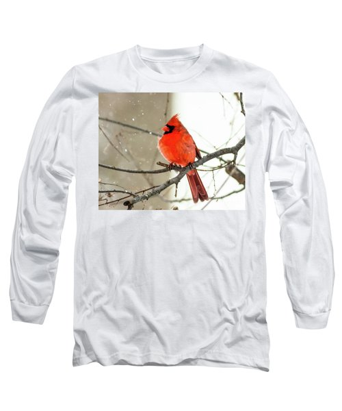 Cardinal In The Snow Long Sleeve T-Shirt by Ursula Lawrence