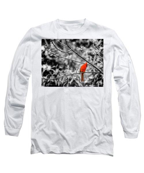 Cardinal... Long Sleeve T-Shirt